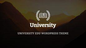 University – WordPress Theme – One click install sample data and import slider demo