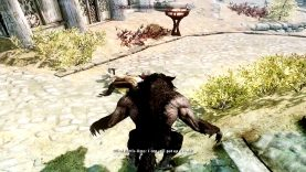 "[Skyrim] ""Wait I know you…""  &  WTF?"