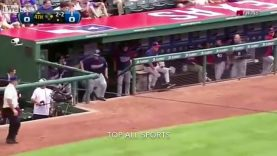 Baseball WTF CRAZY MOMENTS