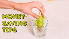 4 money-saving life hacks you should know l 5-MINUTE CRAFTS